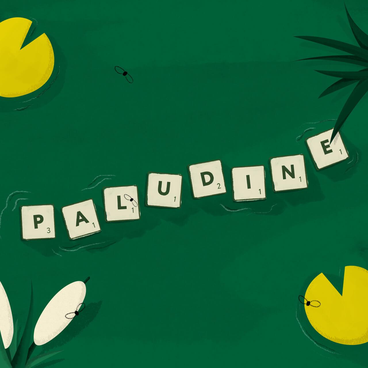 MAT001_FB_Paludine